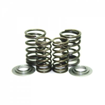 Motorcycle - Pit/Mini Bike - HONDA GROM/MSX 125 dual spring kit 2014-18
